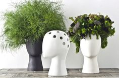 Brilliant: Putting Plants in a Head-shaped Vase