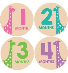 Giraffe Baby Month Stickers Girls #onesiestickers #monthlybabystickers #babybellystickers