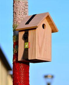 Woodpeck vogelhuisje