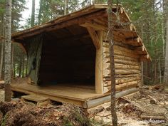 Timber Lean-to