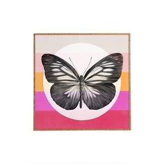 DENY Designs 'Garima Dhawan - Flight' Wall Art ($49) ❤ liked on Polyvore featuring home, home decor, wall art, multi color, deny designs, deny designs home accessories, butterfly wall art, colorful wall art and butterfly home decor