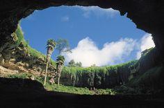 Umpherston Sinkhole, Mount Gambier, South Australia. Also known as The Sunken garden.