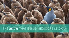 The Myth that Being Mediocre is Okay  #BobProctor #Blog #Friday> http://www.proctorgallagherinstitute.com/15806/the-myth-that-being-mediocre-is-okay