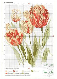 beautiful tulip counted cross stitch
