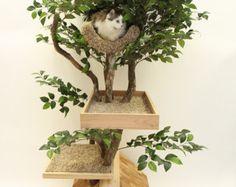 Bergahorn Katze Haustier Baumhaus von PetTreeHouses auf Etsy