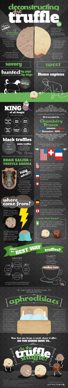 Let's talk about truffles! #holiday #infographic