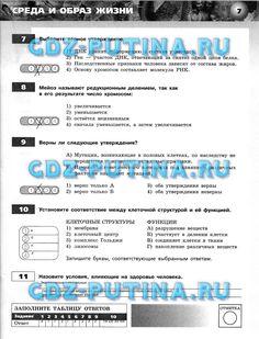 Алгебра тематические проверочные работы в новой форме 7 класс