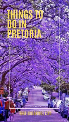 A list of activities to do in Pretoria National Botanical Gardens, Stuff To Do, Things To Do, Have A Great Night, List Of Activities, Pretoria, Beautiful Sites, Heritage Site