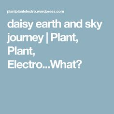daisy earth and sky journey | Plant, Plant, Electro...What?
