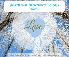 Love-smove. If you're a single parent, it's likely the last thing you want to think about during the holidays. But before you hit that off button, check out this week's post in the series: Adventures in Single Parent Holidays: Week 2: Love.