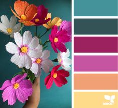 Likes, 83 Comments - Design Seeds® Spring Color Palette, Colour Pallette, Colour Schemes, Bright Colour Palette, Color Combinations, Jewel Tone Decor, Jewel Tone Colors, Jewel Tones, Colours That Go Together