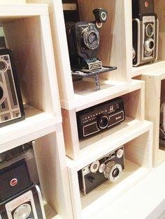 Possible display for all of Adam's vintage cameras.