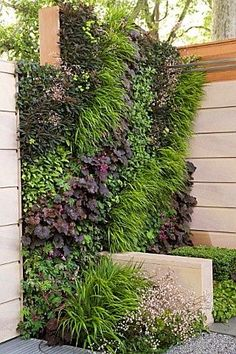 vertical garden yard feature