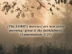 Klaagliederen 3:23