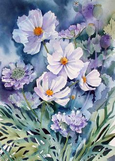 Ann Mortimer  - Cosmos and Scabiosas