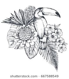 Vector composition of tropical flowers, palm leaves, jungle plants, paradise bouquet with exotic bird. Beautiful black and white floral illustration isolated on white background in sketch style. Black Tattoos, Leaf Tattoos, Body Art Tattoos, Sleeve Tattoos, Tropical Flower Tattoos, Tropical Flowers, Tatuagem Art Nouveau, Jungle Tattoo, Black And White Art Drawing