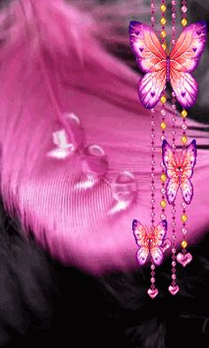 Tag for girly girl wallpaper : sunday animation dopeness 11 gifs Butterfly Gif, Butterfly Pictures, Butterfly Wallpaper, Girl Wallpaper, Nature Wallpaper, Mobile Wallpaper, Wallpaper Backgrounds, Live Wallpapers, Phone Screen Wallpaper