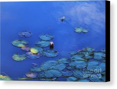 Claude Monet Canvas Print featuring the photograph Monet In Maine by Elizabeth Dow