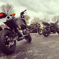 Where's my fellow #GromStunters at?? #Grom #Stunt #Honda #beautiful #bikelife #msx125 #motovlog #motocross #gopro #gsxr #Gromlins #GromGang #wheelie #dirtbike #yamaha #suzuki #photography #GromLife #Stuntday #stunting #wheelies #Motorcycles #supermoto #motovlogger by fooliganvlogs