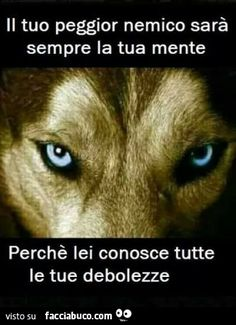 Italian Quotes, Ways To Be Happier, Bff Quotes, Spanish Quotes, Meaningful Quotes, My Mood, T Art, Sentences, Philosophy