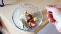 Beste Falle gegen Obstfliegen und Fruchtfliegen (Vegan)