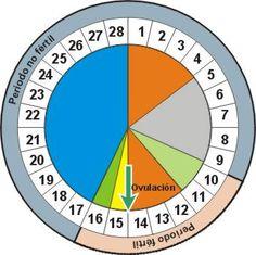cómo utilizar el calendario de fertilidad #embarazo
