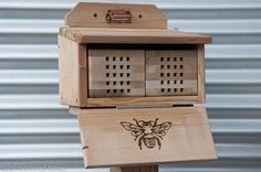 Mason Bees; Non stinging; pollinate 75% more than honey bees.