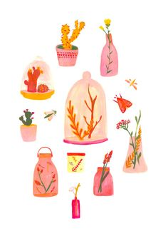 The cutest cacti and terrarium illustration ever by Alice Ferrow.