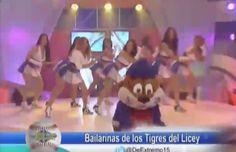 Presentación Y Entrevista A Las Cheerleaders 2015 De Los Tigueres Del Licey #Video