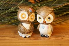 Owl+Decor++Owl+Salt+