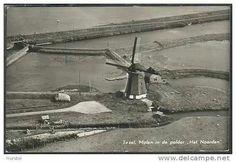 de Molen in de polder het Noorden Texel