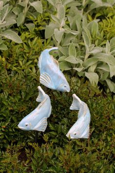 Sky Blue Fishies - Fish In The Garden LLC