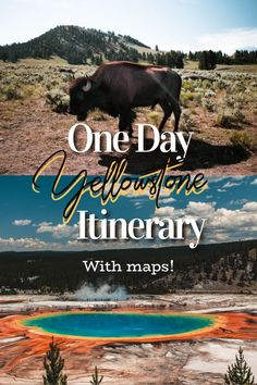 What to do in Yellowstone National Park in 1 day - full guide!  #yellowstone #yellowstonenationalpark #itinerary #nationalpark Best Vacation Destinations, Best Vacation Spots, Vacations, Visit Yellowstone, Yellowstone National Park, National Parks, Lamar Valley, City Guides, Travel Information