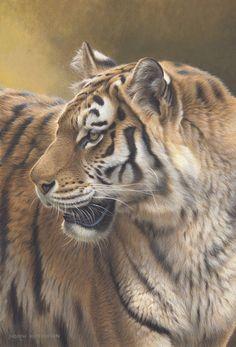 Andrew Hutchinson (2) | Разнообразие животного мира. Обсуждение на LiveInternet - Российский Сервис Онлайн-Дневников