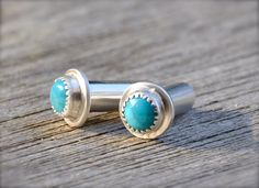 I need these thingys, plugs, gauges, whatever the hell they're called.