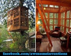 Tree house.. I think it should have a library