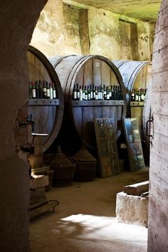 Wine cellar of Castello di Piovera, Asti, Piemonte.