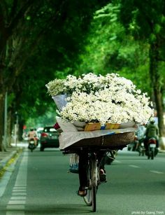 Flower vendor, Vietnam