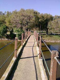 Puente, camping Navarro.