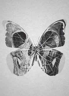 ☆ Skull Butterfly.。Art By :→: RUSS ☆