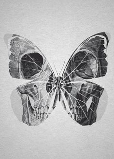 ☆ Skull Butterfly.。Art By :→: RUSS ☆