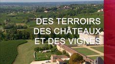 Des terroirs, des châteaux et des vignes - Émission intégrale