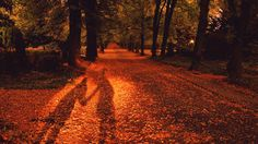No matter how good or bad you think you are at photography, we want to see your favorite autumn views! In this list, you can submit your own photos, vote Fall Pictures, Fall Photos, Fall Pics, Digital Photography School, Conceptual Photography, Photography Ideas, Love Is Gone, Health Benefits, Health Tips