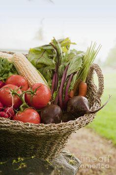 Canasta de verduras orgánicas