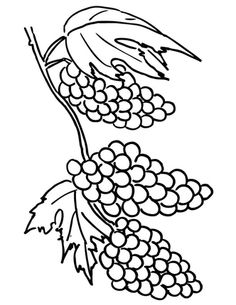 Grape silhouette stock images image 3773884 grapes for Gerri the geranium coloring page