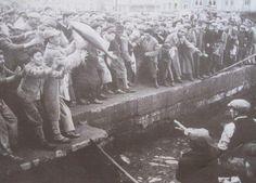 Büyükdere'de balıkçılar yakaladıkları torikleri halka dağıtıyorlar....