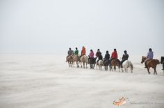 #beach and #horses - riding out there...