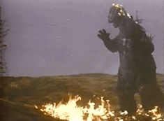 During a pyrotechnics shoot for Mothra vs Godzilla, the suit accidentally caught fire. This left a rather awesome shot.