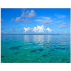 ArtWall George Zucconi Lagoon & Reef Wrapped Canvas, Size: 18 x 24, Orange