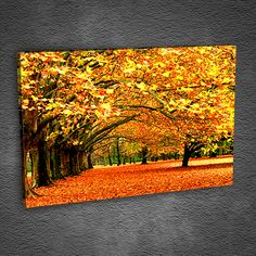 Yaz bitti, yağmurlar başladı. Hoş geldin Sonbahar. Evinizin temasını da değiştirmek isterseniz bekleriz :) www.tabloda.com #sonbahar   #autumn   #kanvas   #tablod